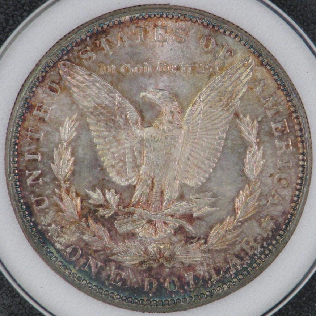 1888-P Morgan Dollar NCI MS63 - 5