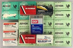 Group of 25 boxes assorted .22 cal ammunition