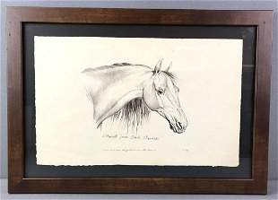Framed Horse Lithograph on Parchment