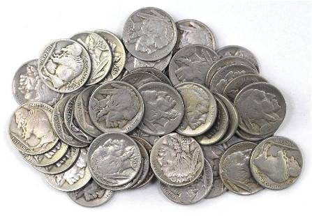 Group of (43) Buffalo Nickels
