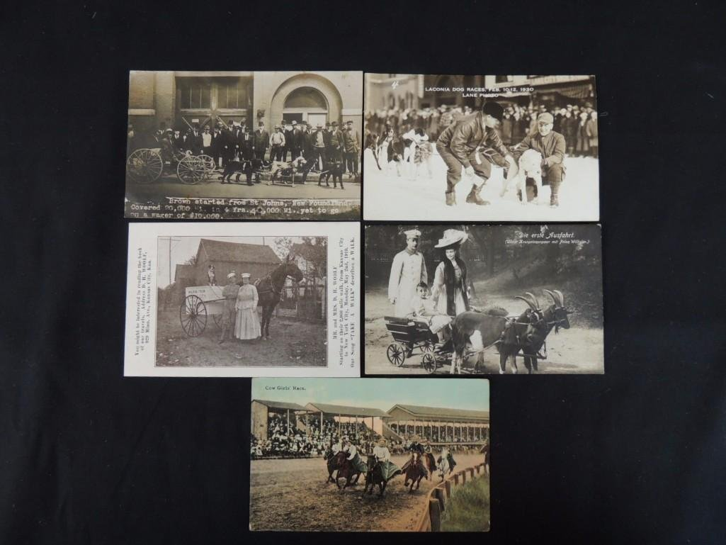 Group of 5 Postcards of Horse Drawn Carriages, Dog