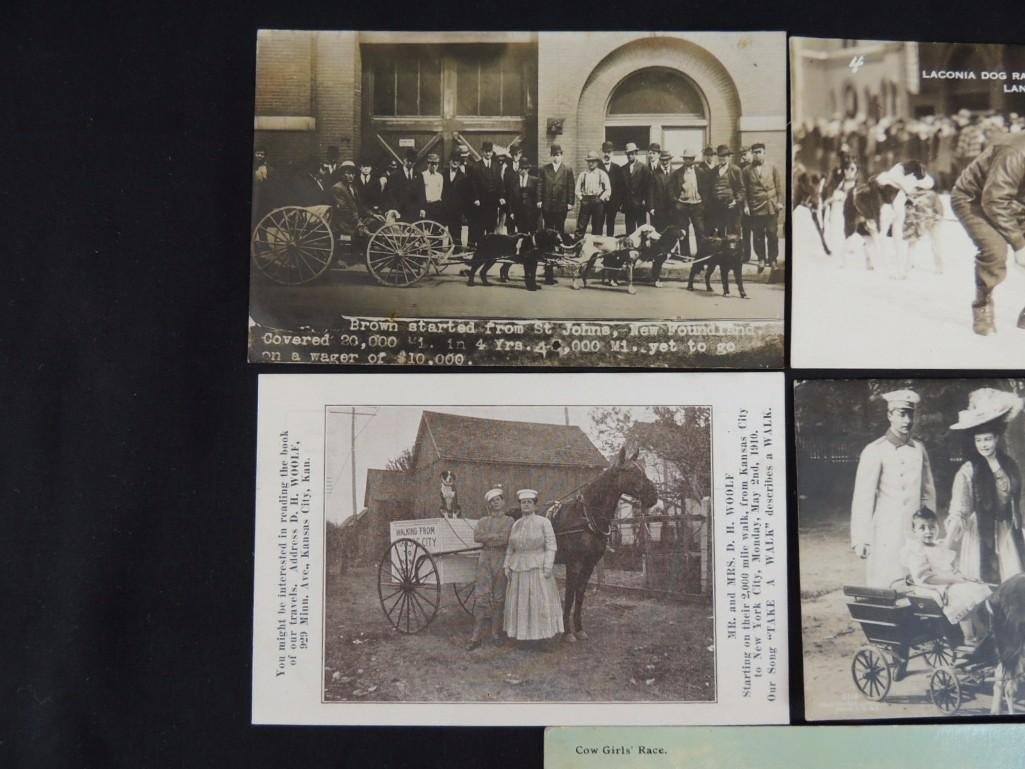 Group of 5 Postcards of Horse Drawn Carriages, Dog - 3
