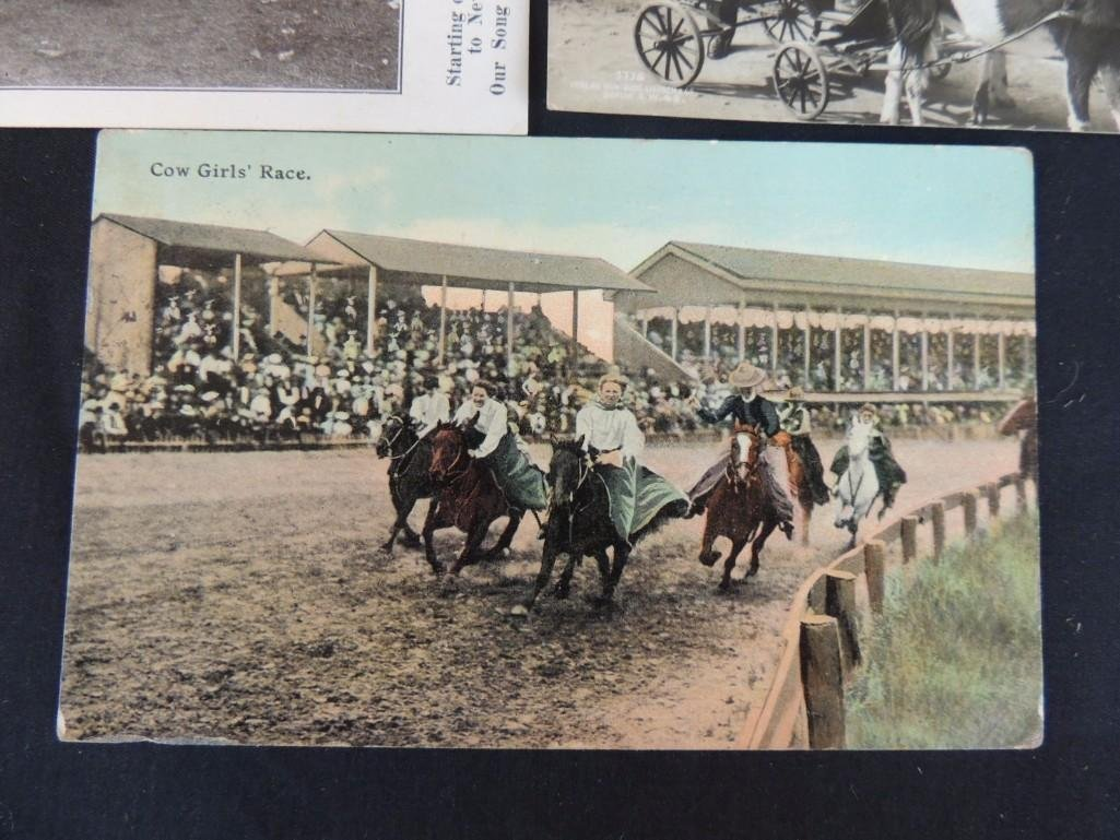 Group of 5 Postcards of Horse Drawn Carriages, Dog - 4
