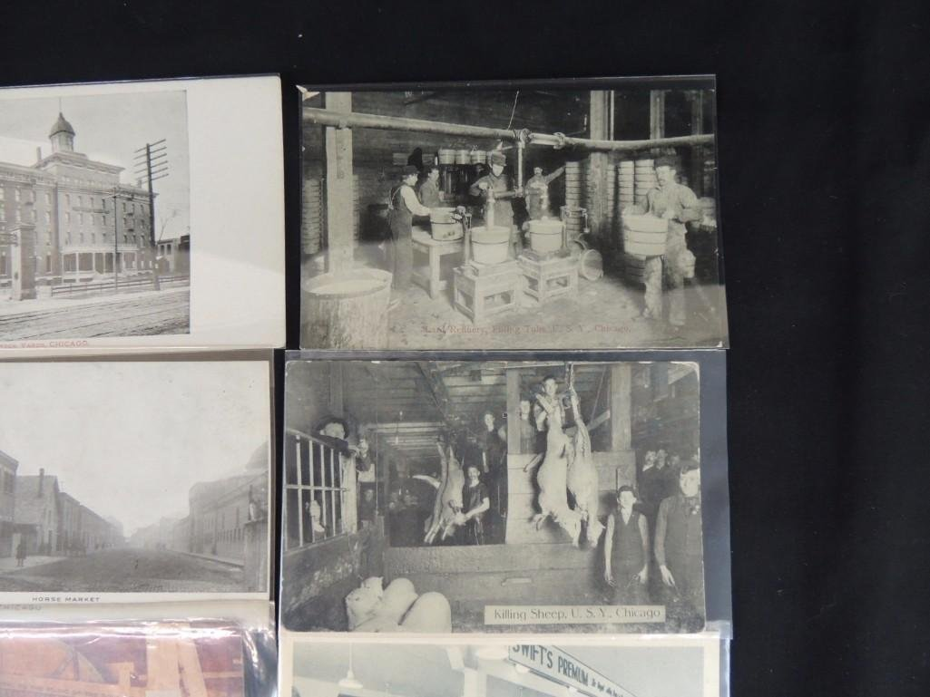 Group of 12 Postcards of Chicago's Union Stock Yards - 2