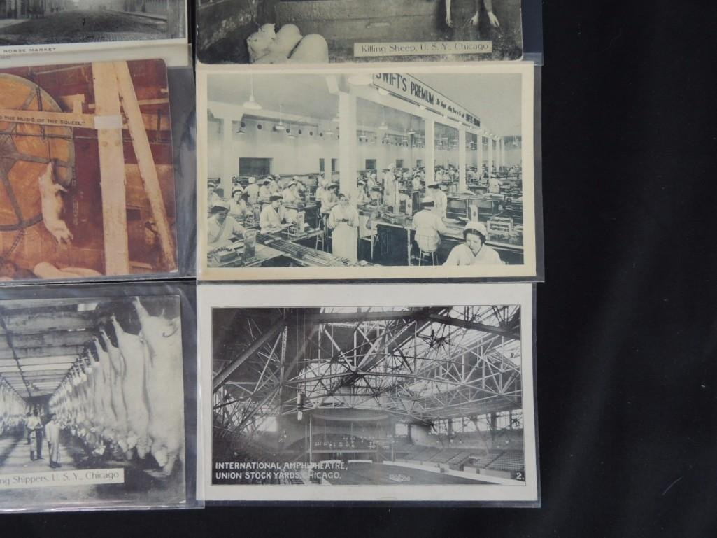 Group of 12 Postcards of Chicago's Union Stock Yards - 3