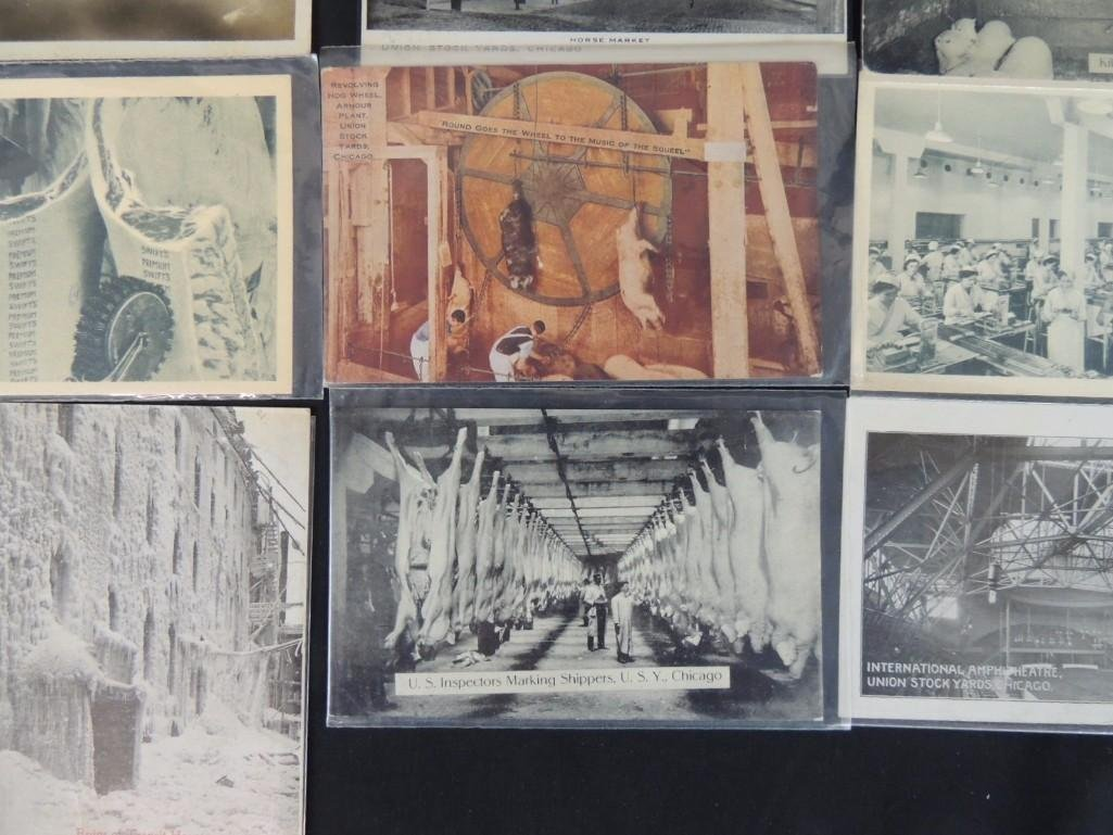Group of 12 Postcards of Chicago's Union Stock Yards - 4