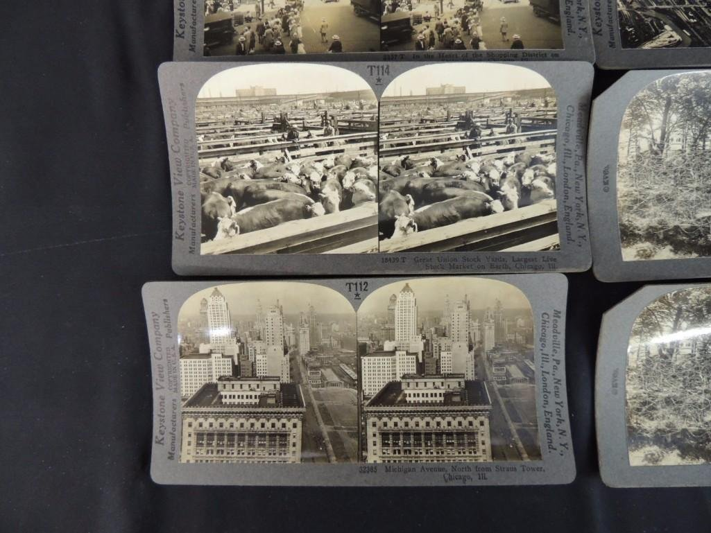1893 World's Fair and Chicago Stereo views Group of 8 - 4