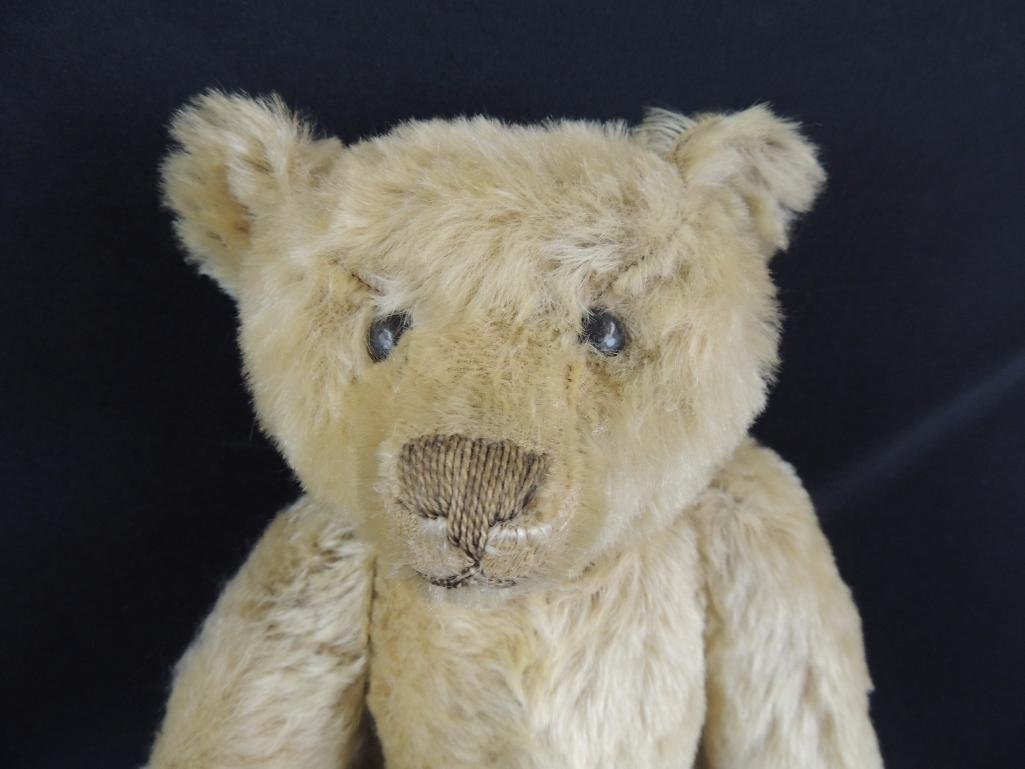 Antique Humpback Steiff Teddy Bear - 2