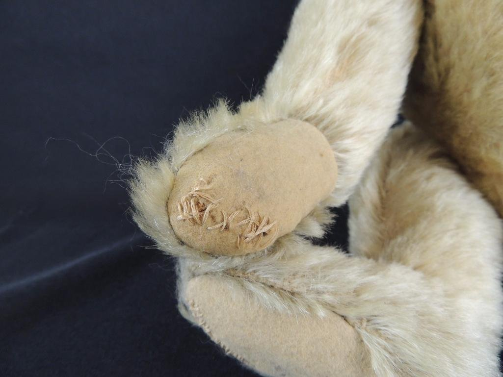 Antique Humpback Steiff Teddy Bear - 3