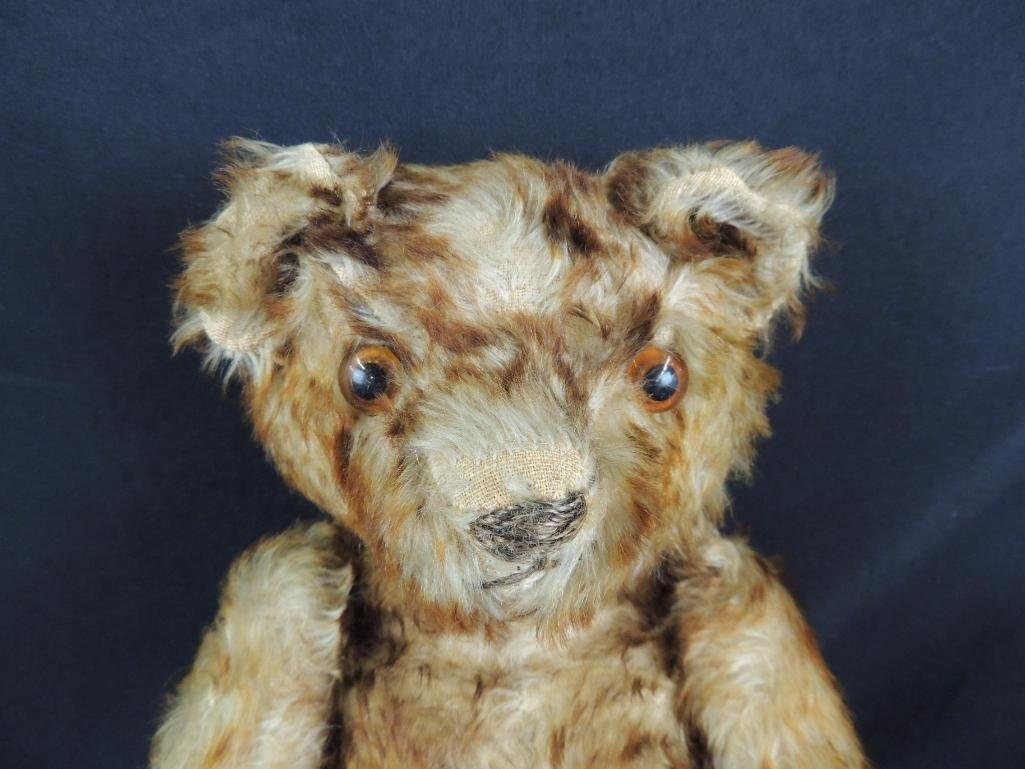Antique Humpback Steiff Teddy Bear with Growler - 2