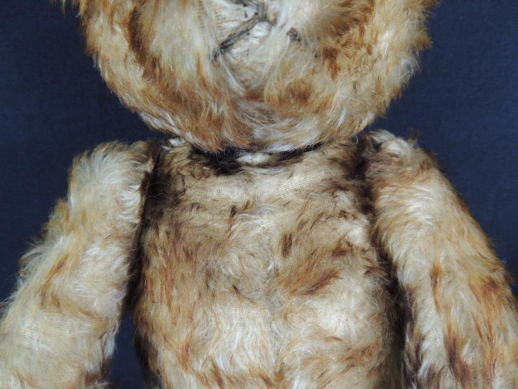 Antique Humpback Steiff Teddy Bear with Growler - 3