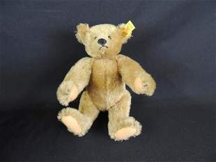 Antique Humpback Steiff Teddy Bear with Original Tags
