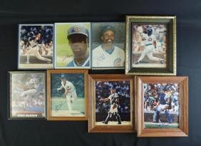Group of 8 Chicago Cubs Signed Photos