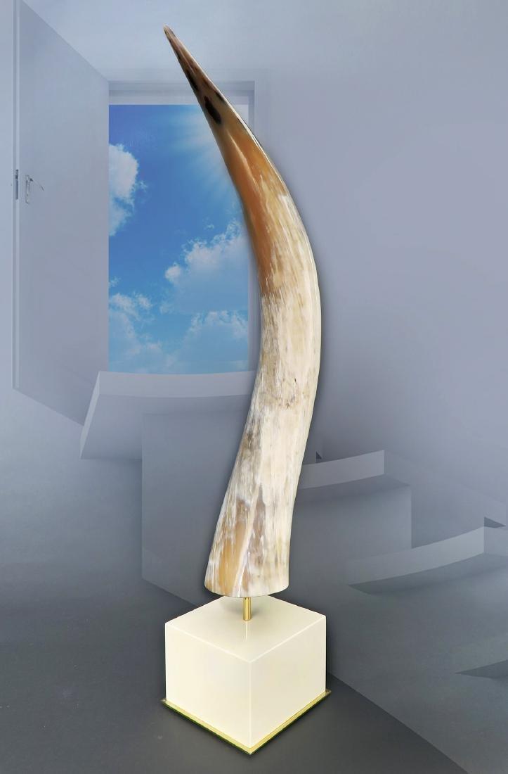 A Sculptured Yak Horn