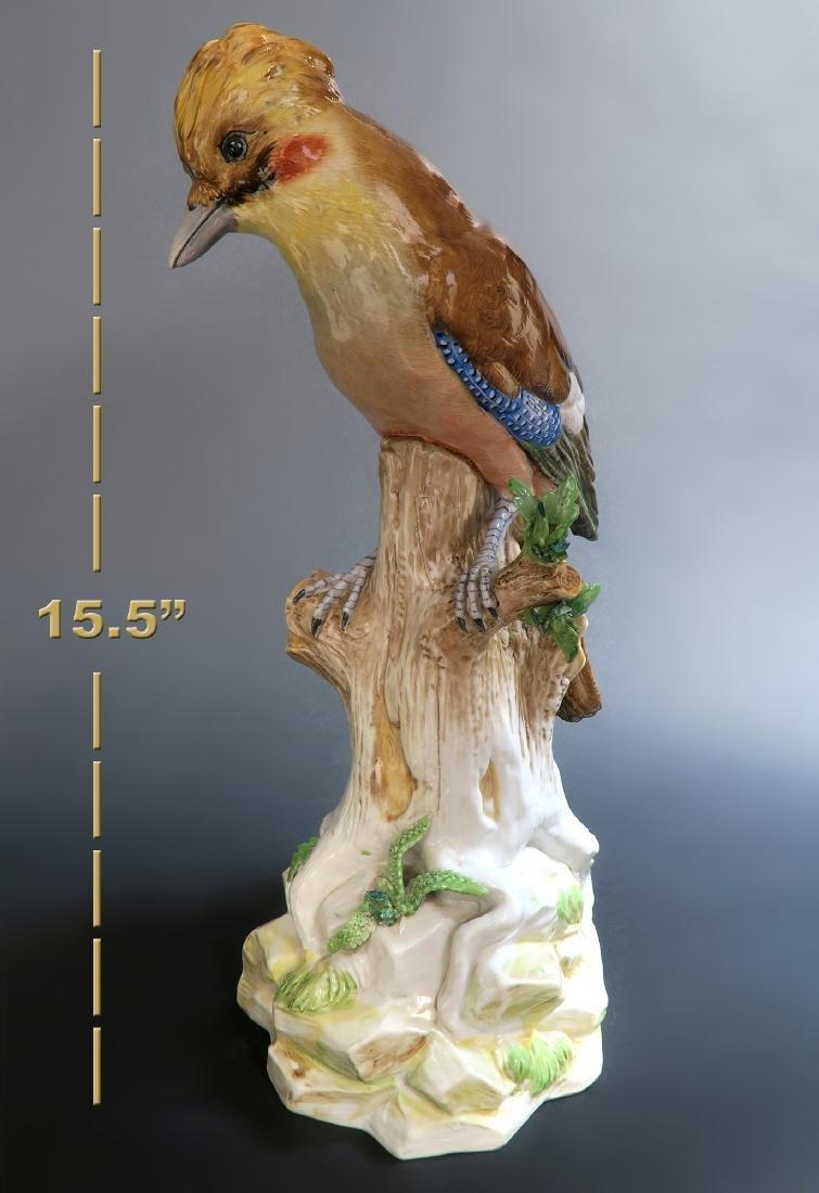 Fine Hand Painted Meissen Style Birds, 19th C. - 5
