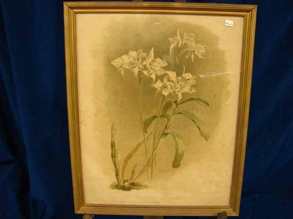 803: flower