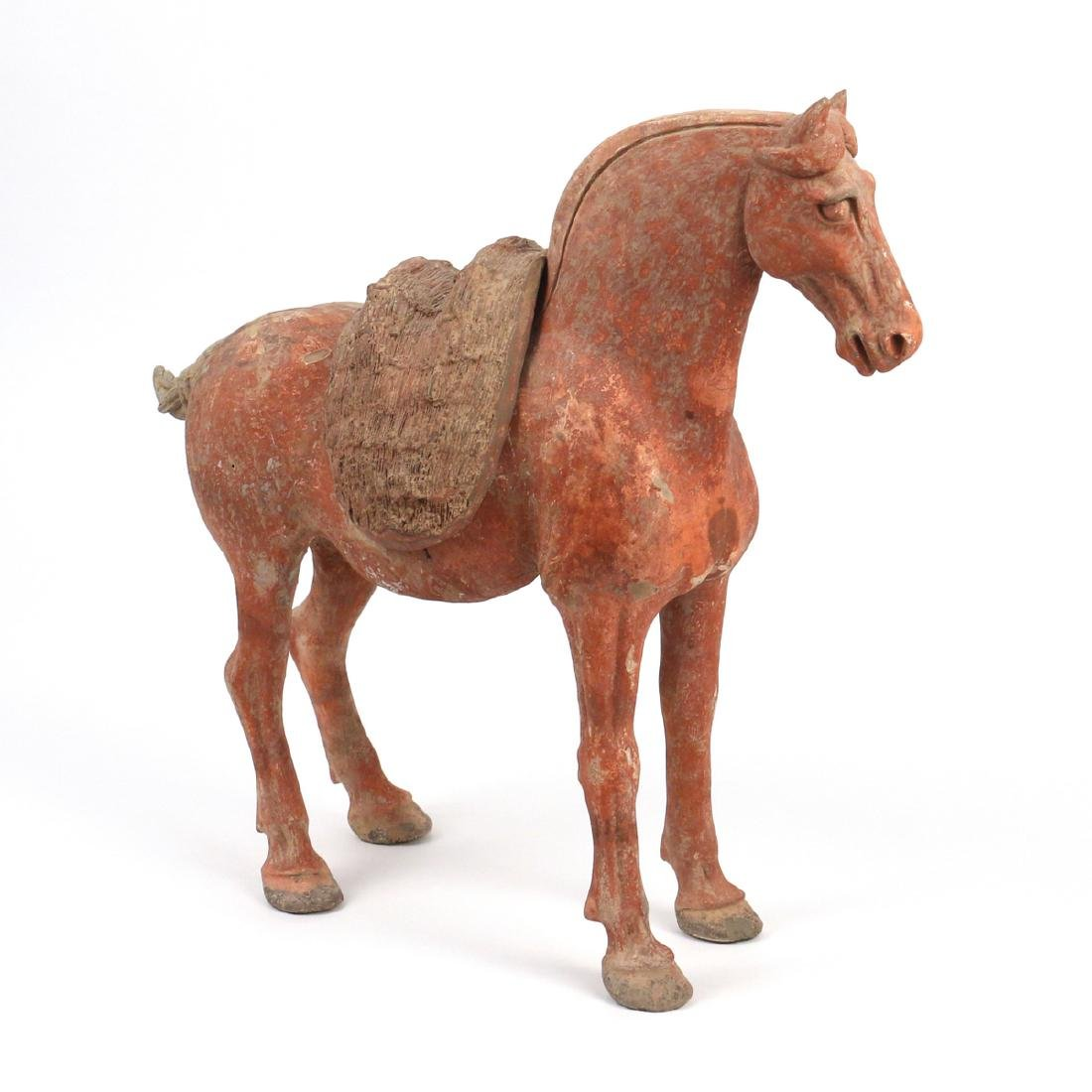 TANG DYNASTY CAPARISONED HORSE - 3