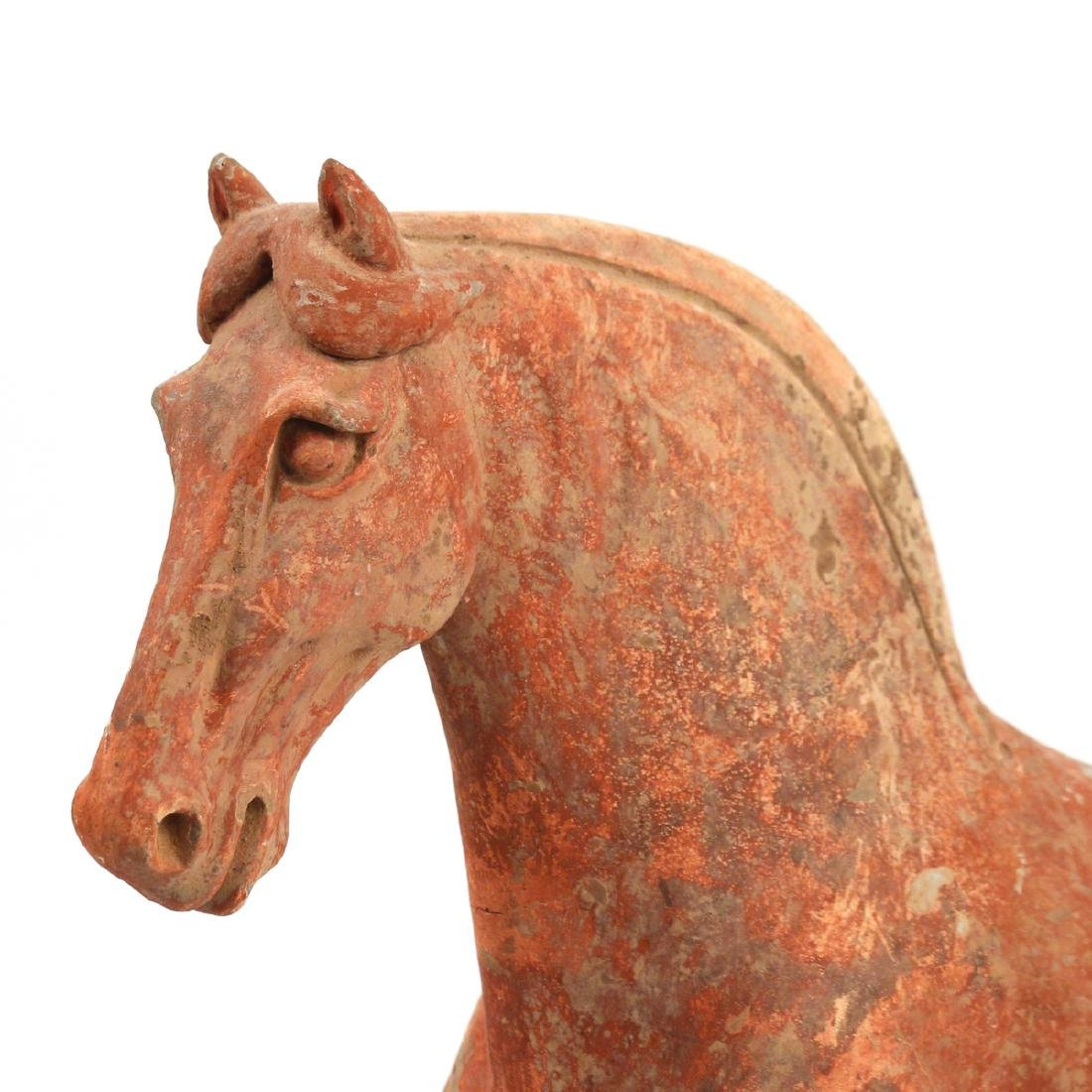 TANG DYNASTY CAPARISONED HORSE - 4