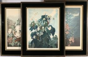 (3pc) FRAMED BOTANICAL PRINTS