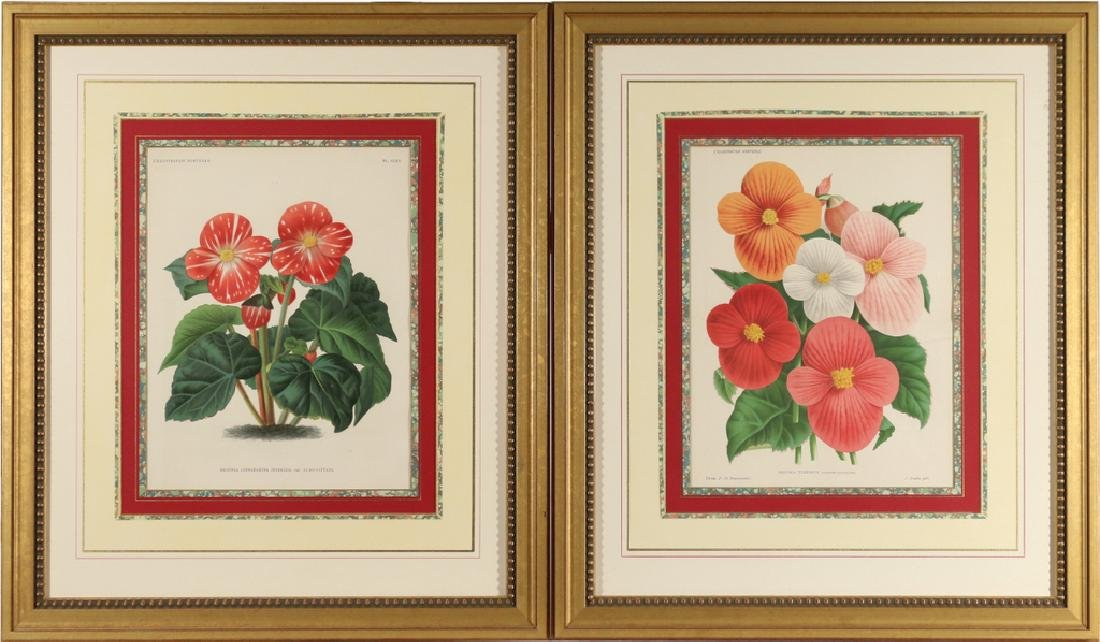 (5pc) FINELY FRAMED BOTANICAL PRINTS - 2
