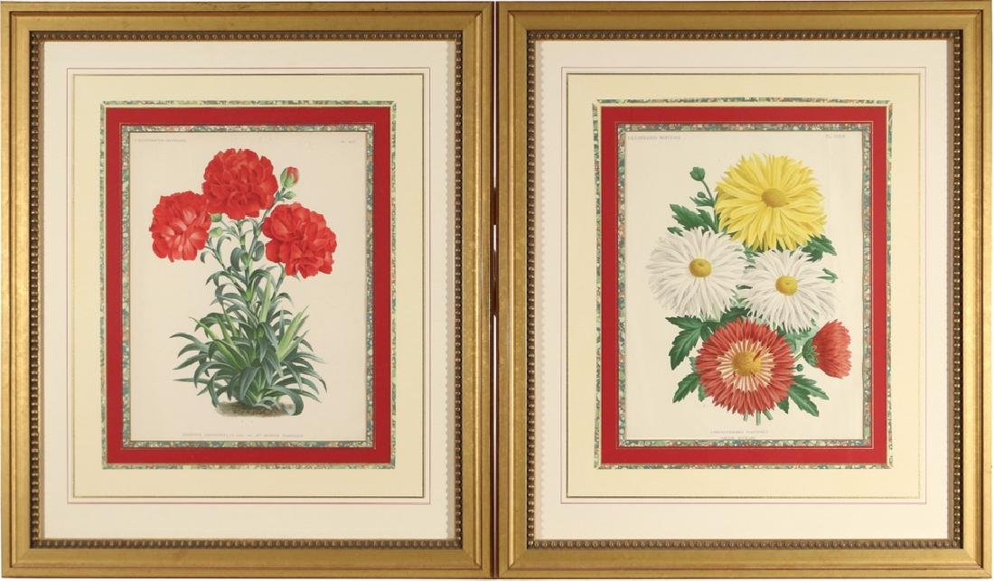 (5pc) FINELY FRAMED BOTANICAL PRINTS - 7