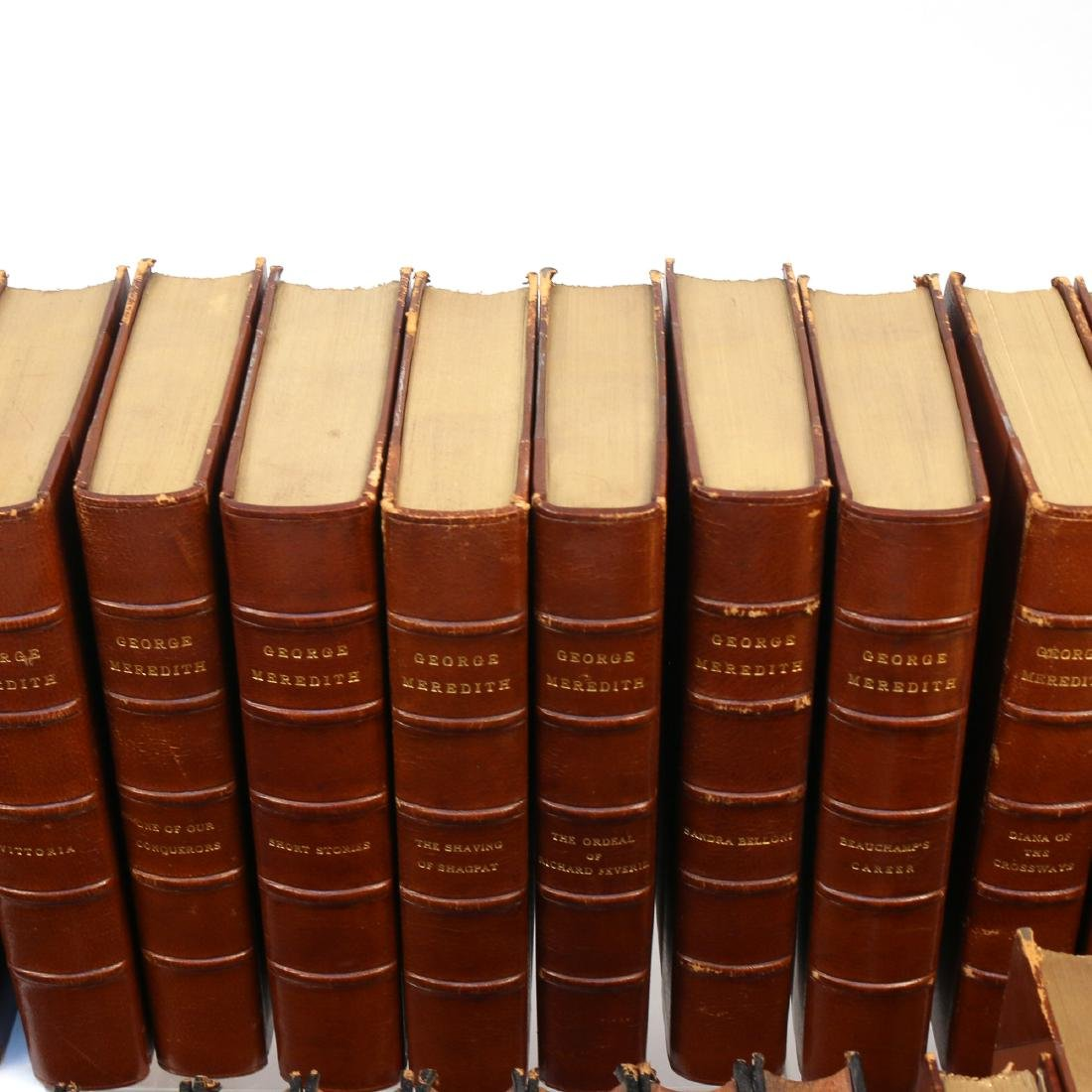 (53vol) [BINDINGS] MISC. LEATHER-BOUND BOOKS - 9