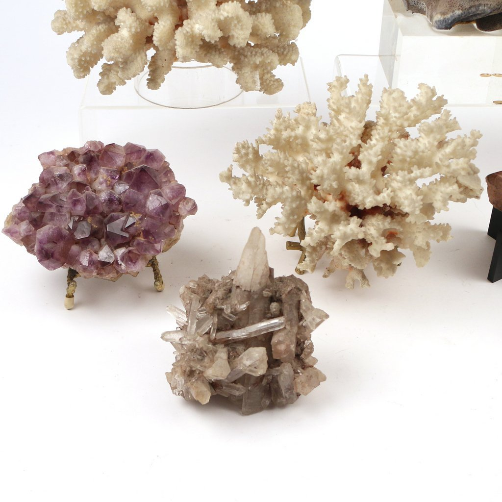 (10pc) GEODES AND CORAL - 2