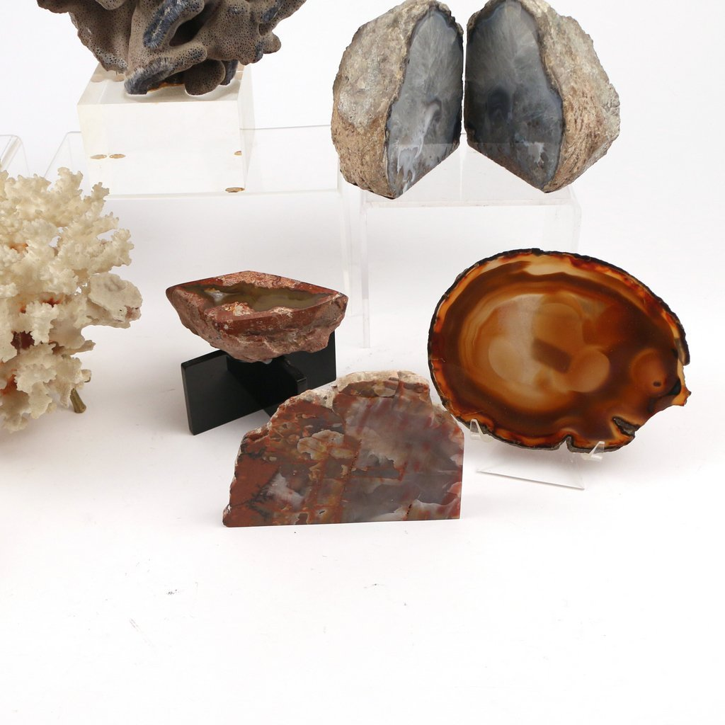 (10pc) GEODES AND CORAL - 5