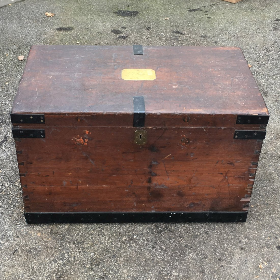 FITTED CAMPHORWOOD SILVER TRUNK
