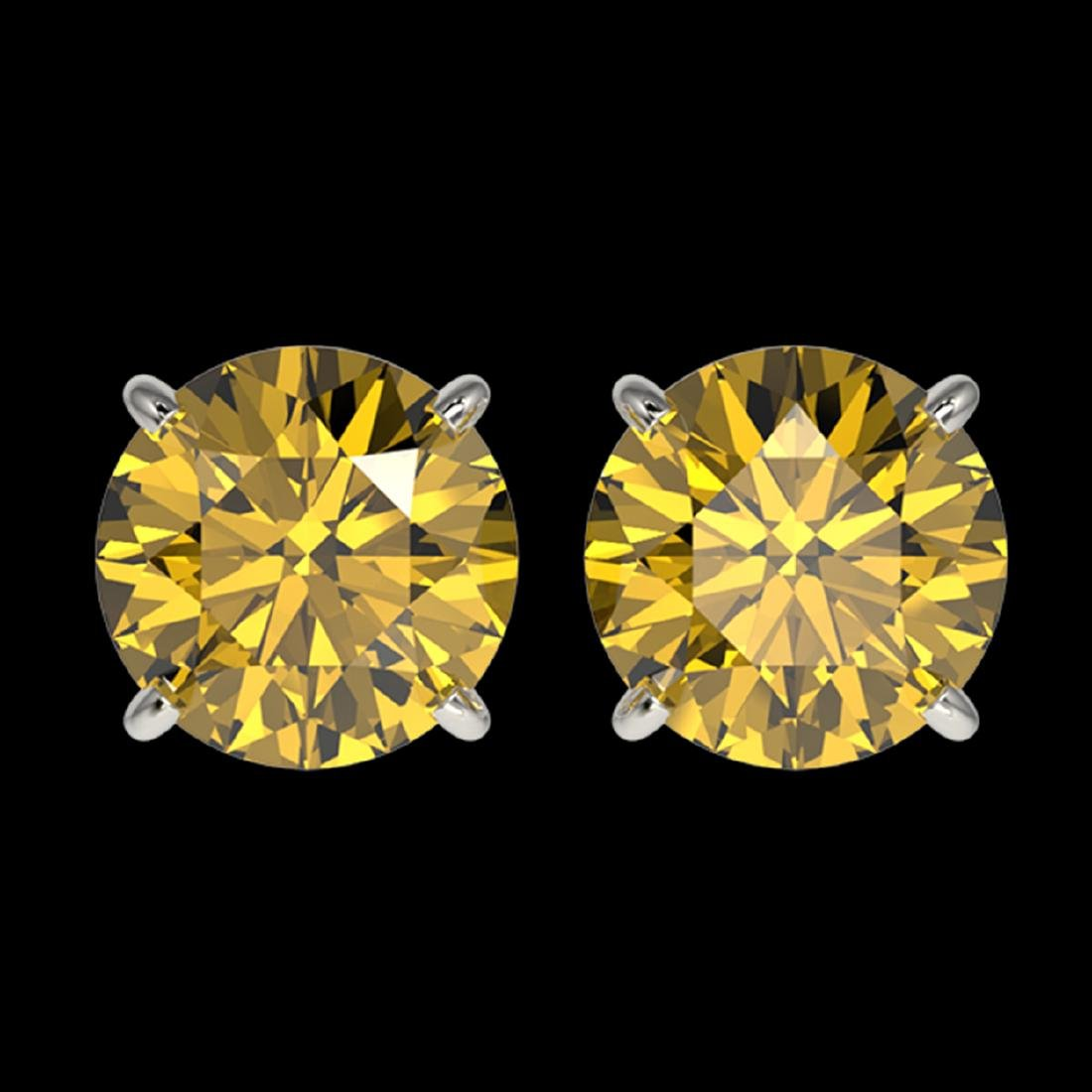 2.50 ctw Intense Yellow Diamond Stud Earrings 10K White