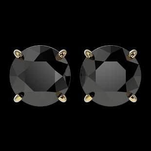 2.60 ctw Fancy Black Diamond Solitaire Stud Earrings
