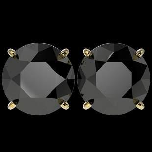 5 ctw Fancy Black Diamond Solitaire Stud Earrings 10k