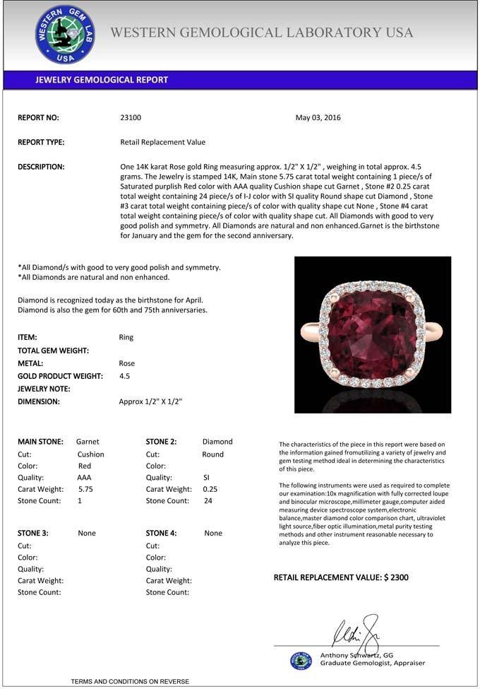 6.0 CTW Garnet And Micro Pave Halo Diamond Ring - 3