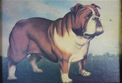 BULLDOG GICLEE OF A PAUL STAGG OIL PAINTING
