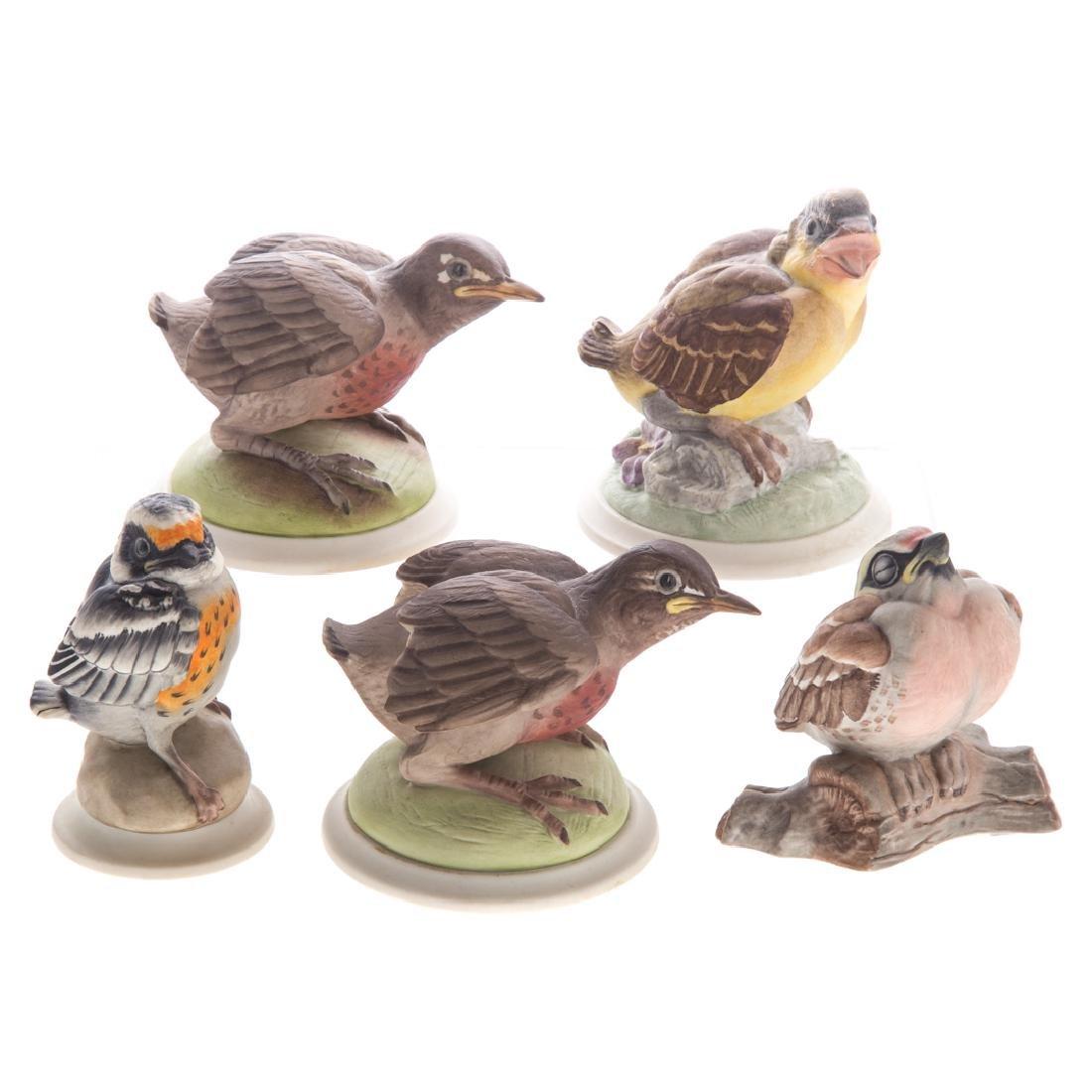 Five Boehm bisque baby/fledgling birds