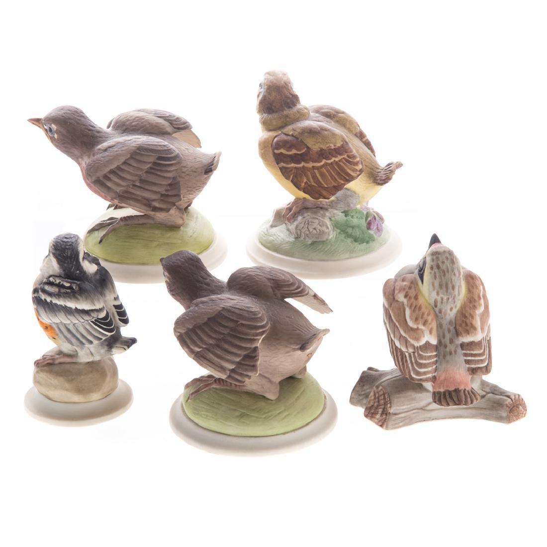 Five Boehm bisque baby/fledgling birds - 2
