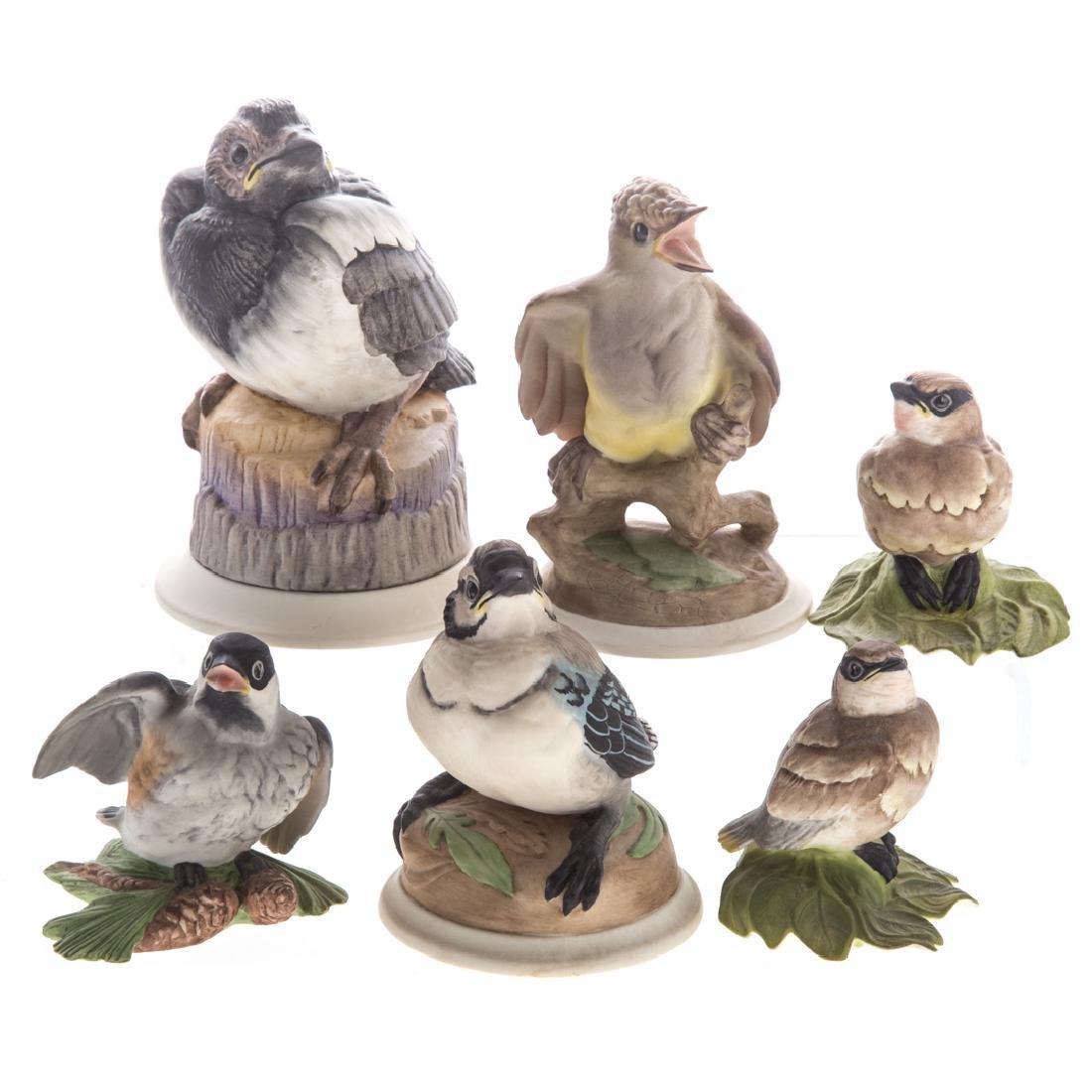 Six Boehm bisque baby /fledgling birds