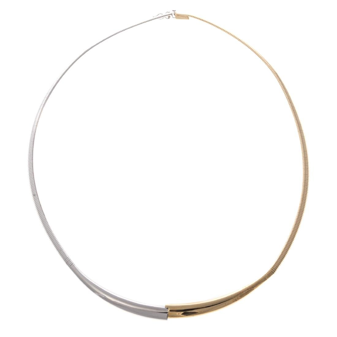 A Lady's Two Toned Omega Necklace