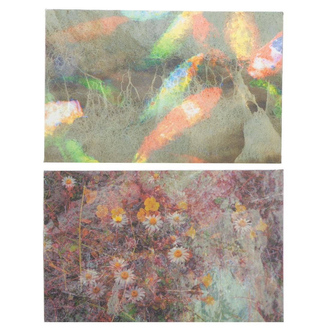 EJ Montgomery. Pair of Abstract Botanicals