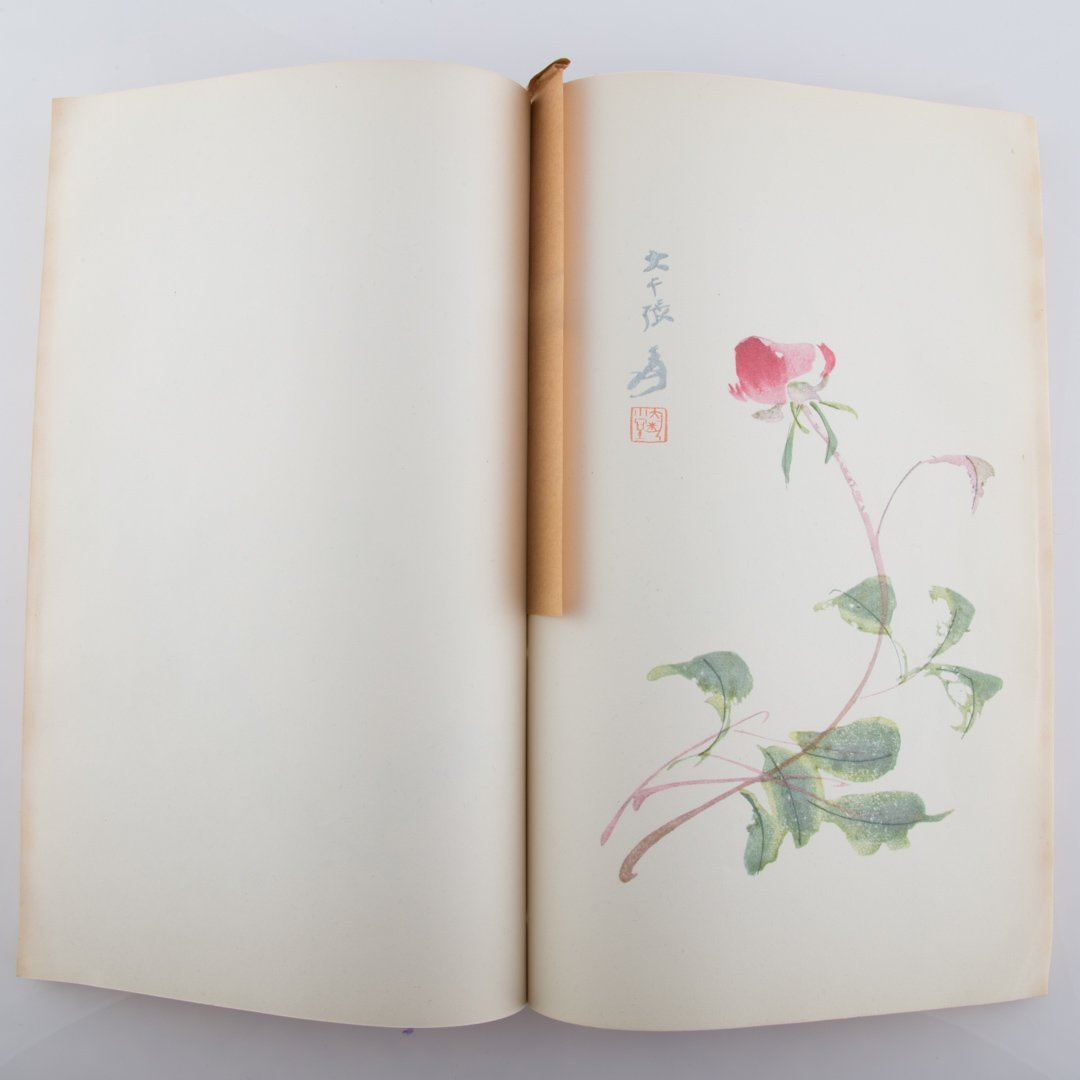 Chinese color prints of Today Portfolio - 2