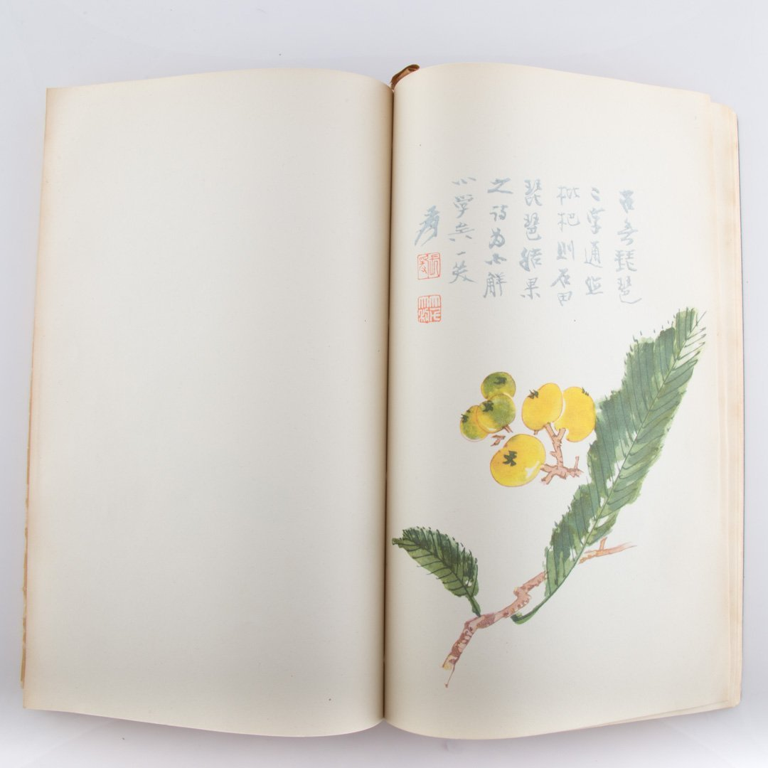 Chinese color prints of Today Portfolio - 4