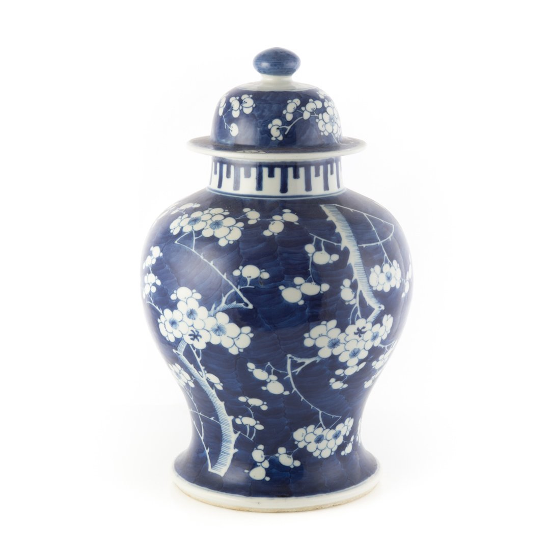 Chinese Export jar in the Hawthorne pattern - 2
