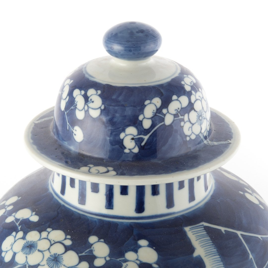 Chinese Export jar in the Hawthorne pattern - 3