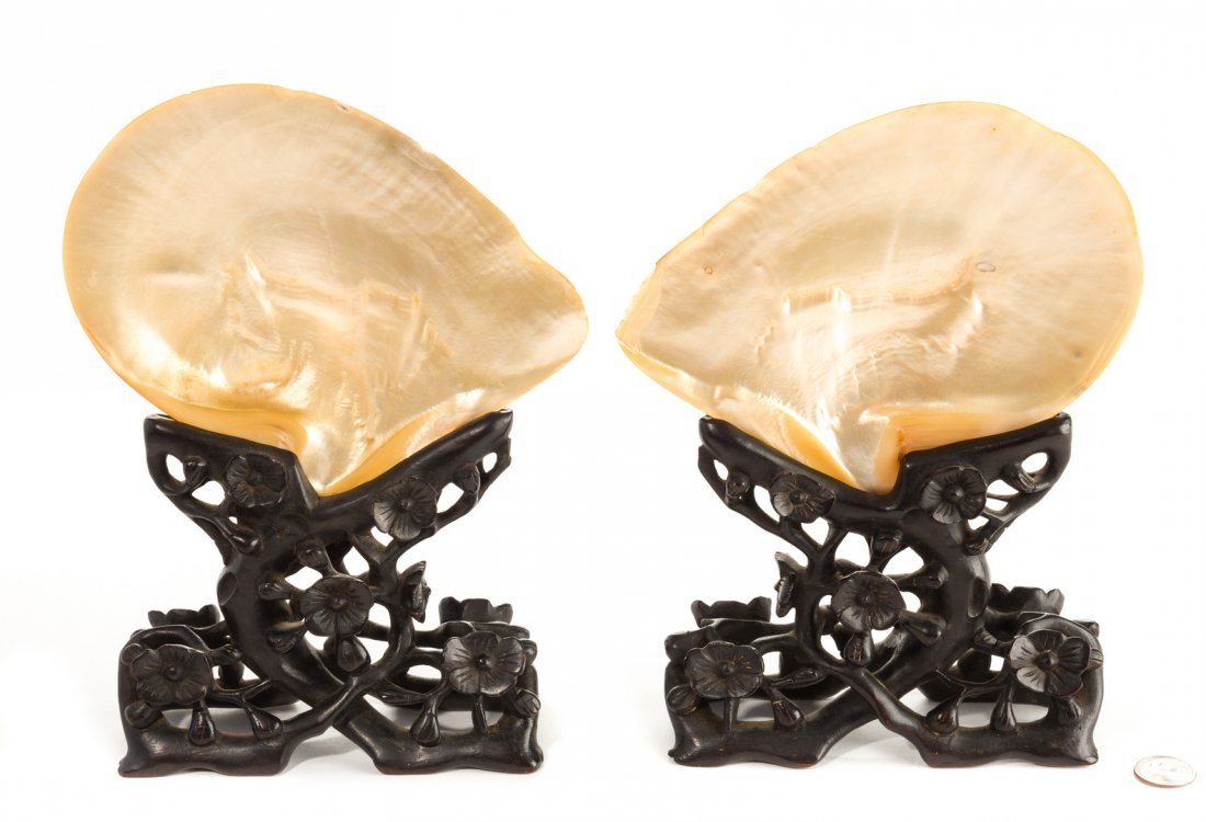 Pr. Chinese Mother of Pearl Shells w/ Carved Stands