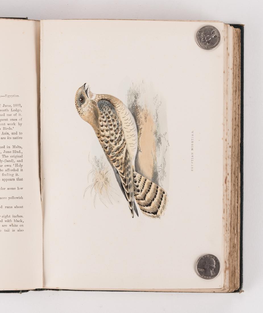 History of British Birds, F. Morris, 1891, 6 Vols. - 10