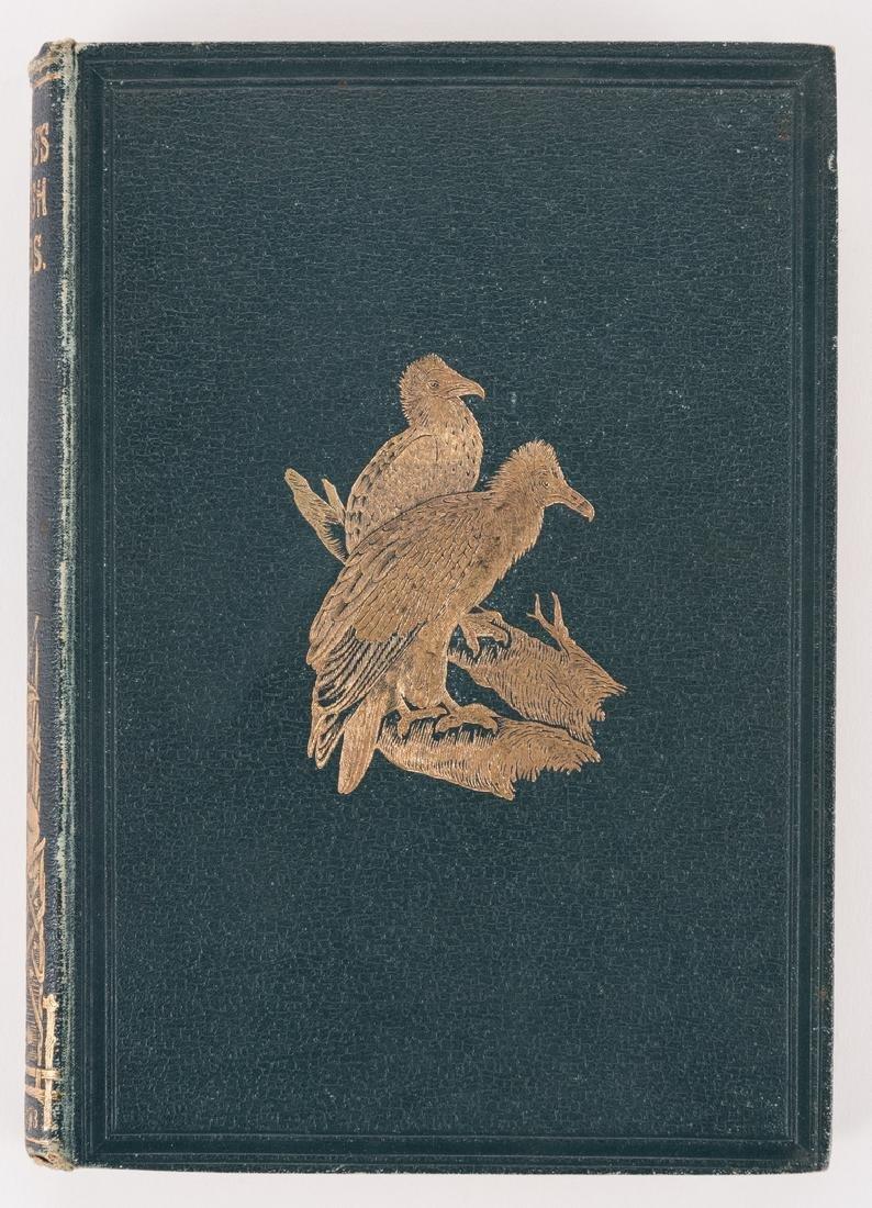 History of British Birds, F. Morris, 1891, 6 Vols. - 8