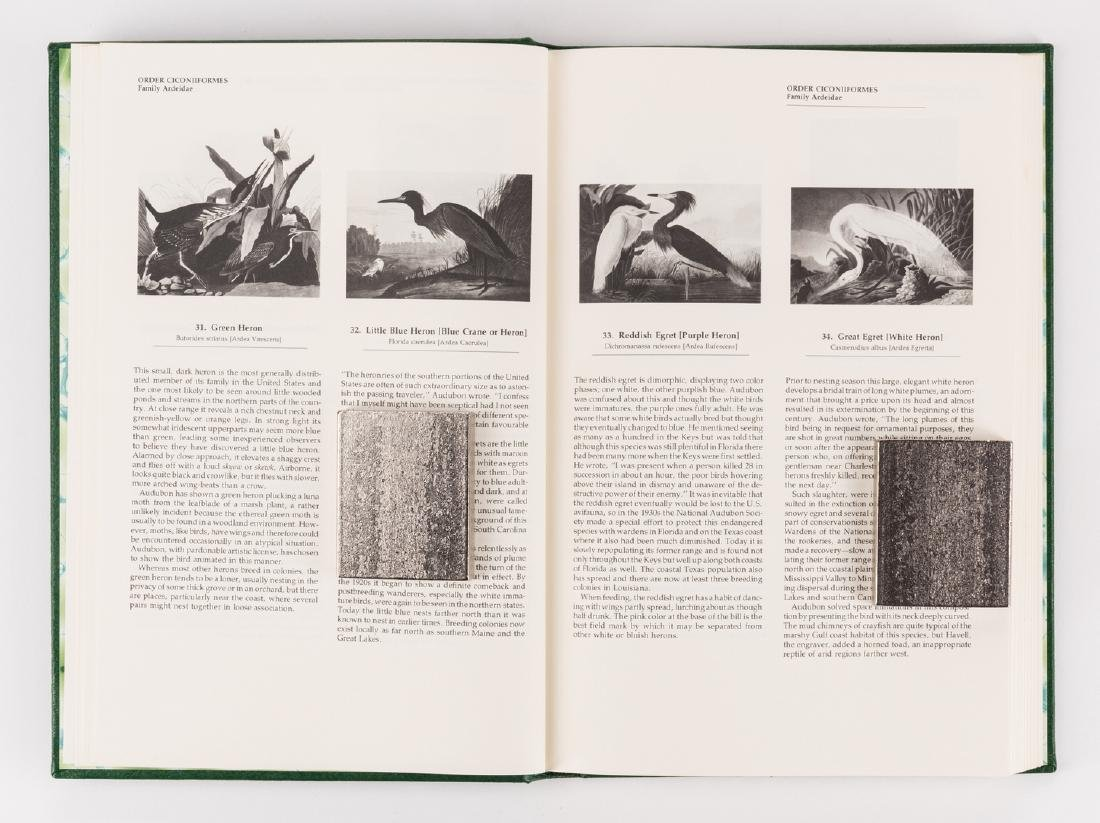 8 Audubon Books inc. 1846 Quadrupeds Text Vol. 1 - 10