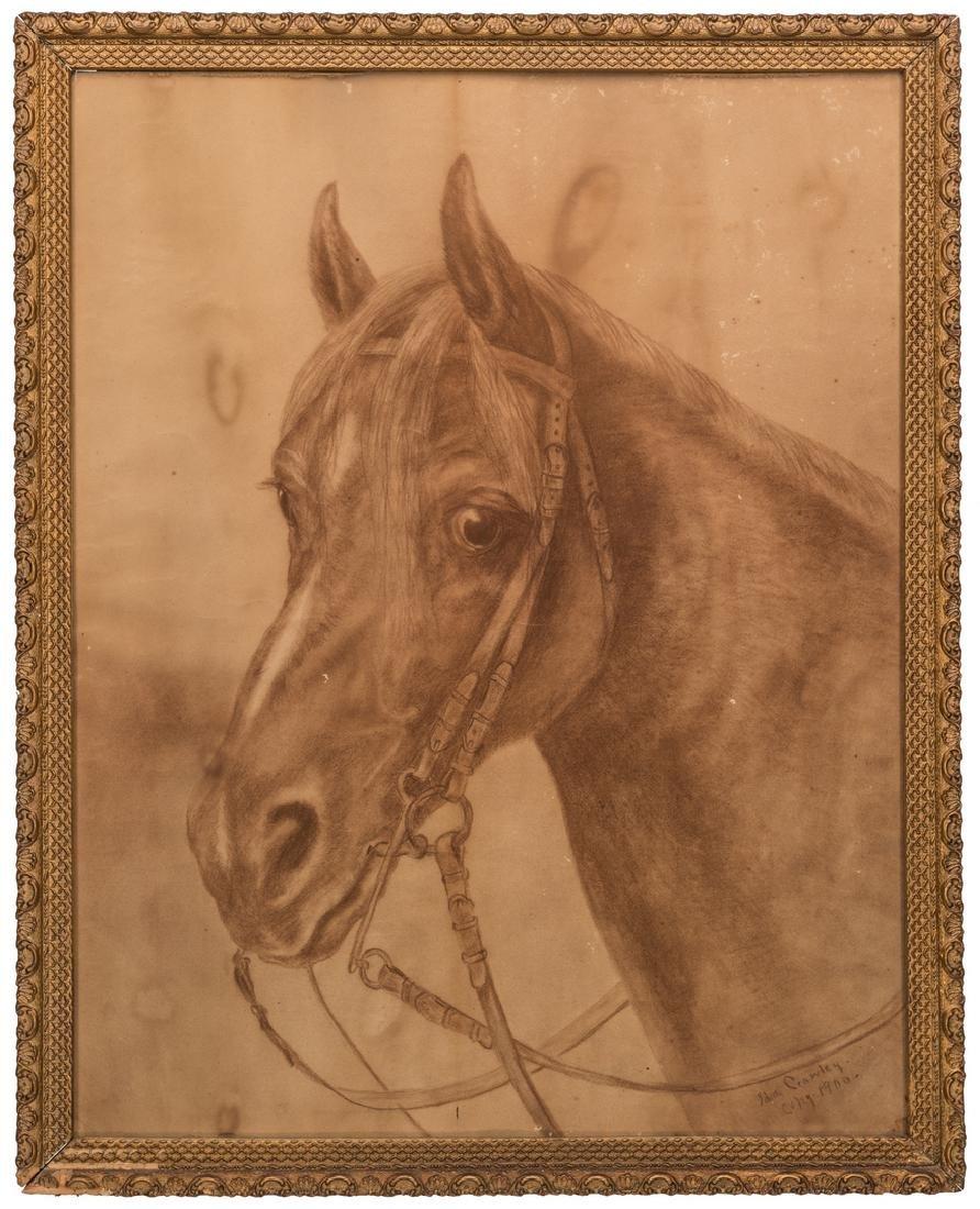 Ida Crawley Charcoal Drawing of a Horse