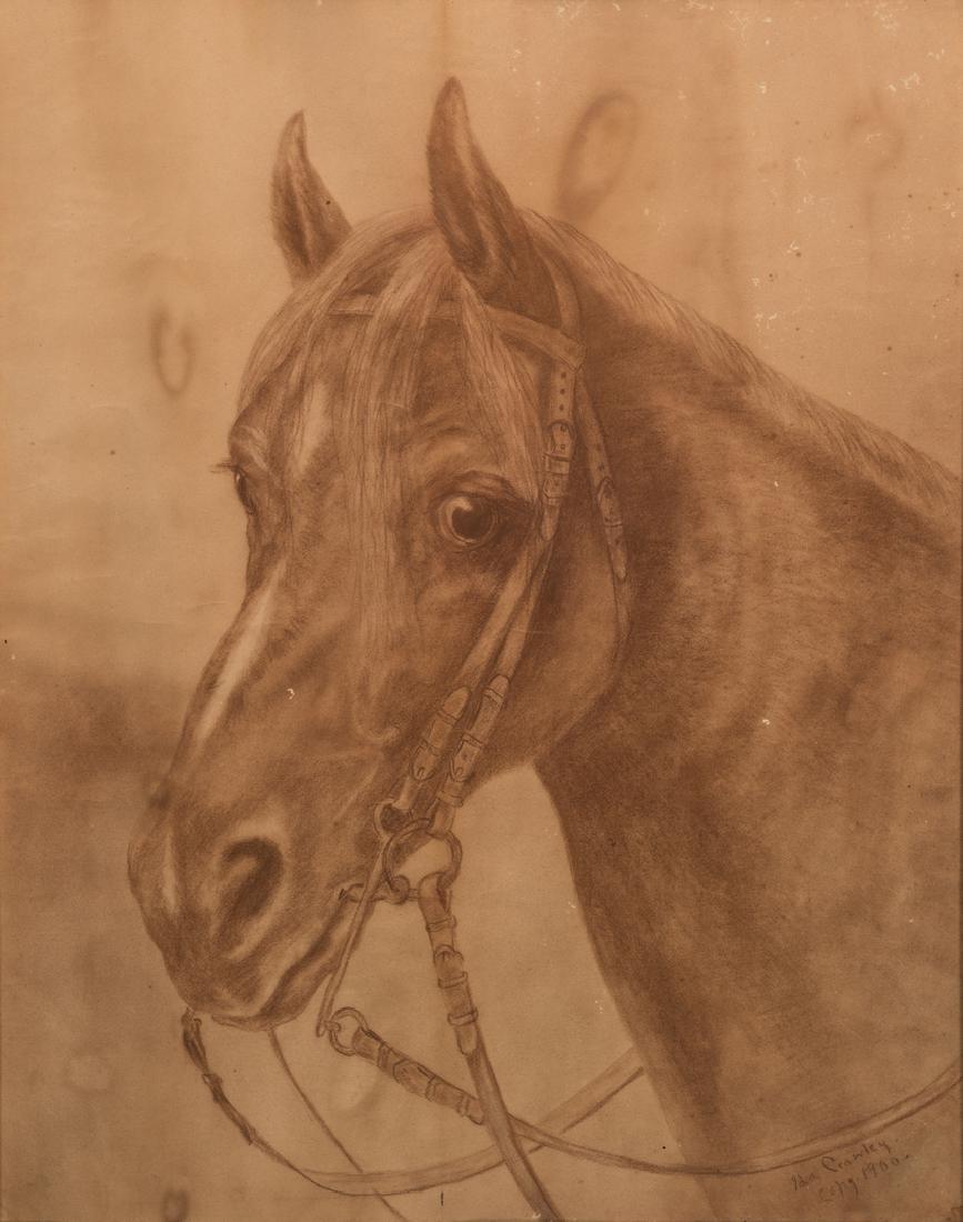 Ida Crawley Charcoal Drawing of a Horse - 2