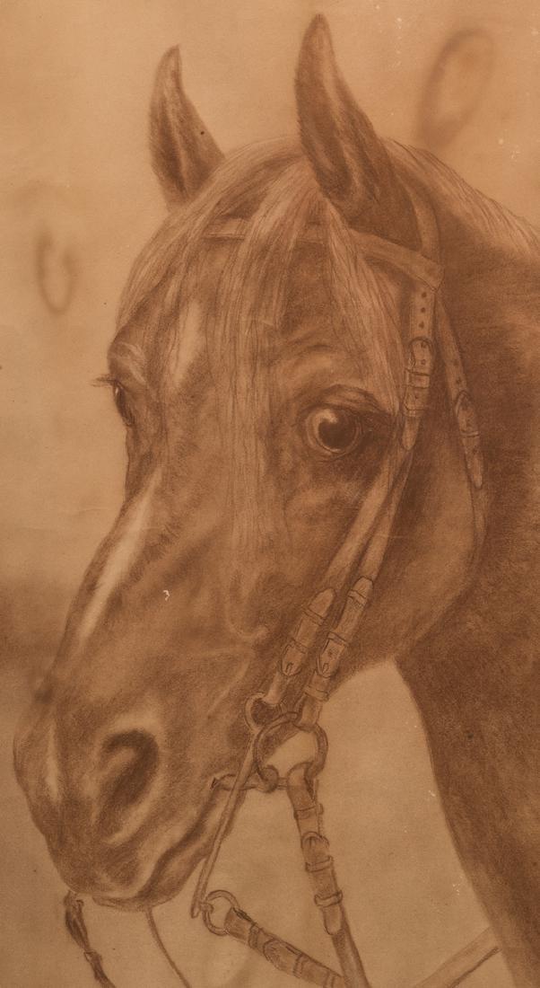 Ida Crawley Charcoal Drawing of a Horse - 3